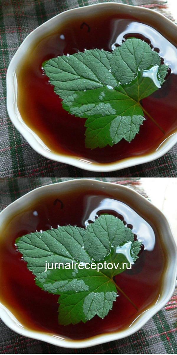 Каждый год заготавливаю смородиновые листья — это отличное лекарство для почек и суставов. Ни ревматизма, ни подагры не будет!