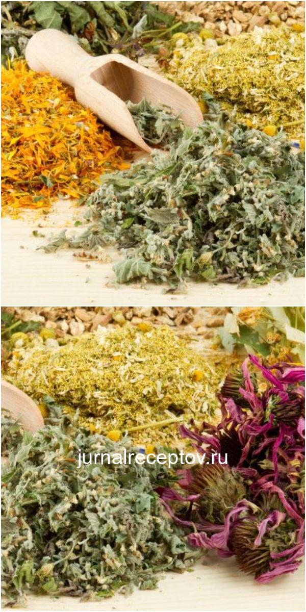 20 натуральных продуктов, уничтожающих паразиты и грибки в организме.