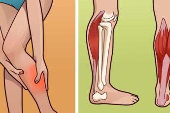 Ногу свело: как остановить мышечную судорогу 1